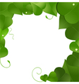 lush green leaves vector image vector image