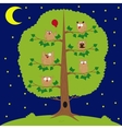 owl sitting at night on the tree funny owls vector image vector image