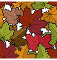 Seamless pattern from maple leaves vector image vector image