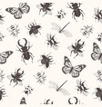 seamless pattern with insects summer print vector image