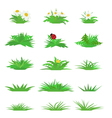 set tufts grass vector image
