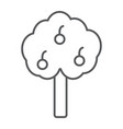 apple tree thin line icon farm and garden fruit vector image
