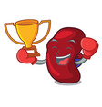 Boxing winner spleen mascot cartoon style