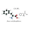 C9H11NO2 amino acid Phenylalanine molecule vector image vector image