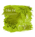 olives and olive oil poster sketch vector image vector image