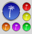 Palm icon sign Round symbol on bright colourful vector image vector image