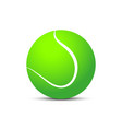 tennis ball with shadow on blank background vector image