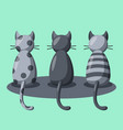 three cats on green background vector image vector image