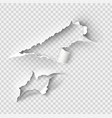 torn ripped paper template sides vector image vector image