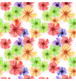 colorful petunia flowers background vector image