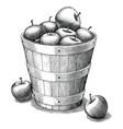 apple in basket hand drawing vintage style black vector image vector image