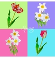 Background with tulips3-05 vector image