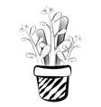sketch of a cactus vector image vector image