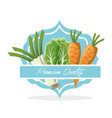 vegetables premium quality food vector image vector image