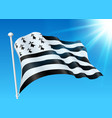 breton flag on wind with sunshine and blue sky vector image vector image