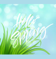 frash spring green grass background with vector image
