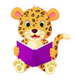 leopard reading book vector image vector image