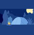 night campfire flat forest camp wild seasonal vector image