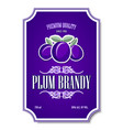 premium quality plum brandy distillate label on vector image vector image