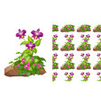 seamless background design with purple orchid vector image