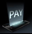 smartphone with word pay on screen vector image