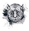 Watercolor raster tiger vector image