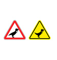 Attention of Tyrannosaurus Danger sign Cautious vector image