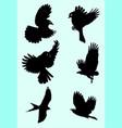 cute birds silhouette vector image