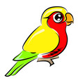 cute little parrot on white background vector image vector image