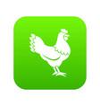 hen icon digital green vector image