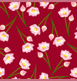 pink indian lotus on red background vector image vector image