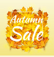 autumn sale banner with text bright colorful 3d vector image vector image