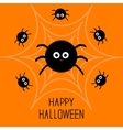 Cute cartoon fluffy spider set on the web vector image vector image