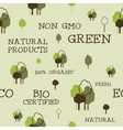 Eco and organic seamless pattern Non gmo design vector image vector image