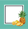 hello summer fresh fruit template vector image