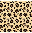 Leopard print vector image vector image