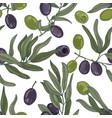 elegant botanical seamless pattern with olive tree vector image
