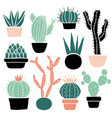 cactus and succulents set vector image vector image
