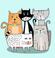 cute cat gang with hand drawn cartoon vector image vector image