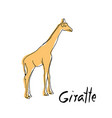 cute giraffe cartoon of vector image