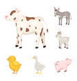isolated object of farm and food icon collection vector image vector image