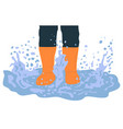 legs in rubber boots playing in puddle cartoon vector image