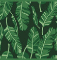 seamless pattern with palm leaves graphic vector image