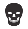 skull with bones icon vector image