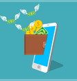smartphone screen with wallet and credit cards vector image vector image