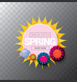 spring sale web banner isolated on vector image