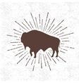 symbol buffalo vector image vector image