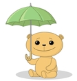 teddy bear and umbrella vector image vector image