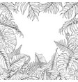 tropical plants frame vector image vector image