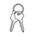 two door keys isolated on white background vector image